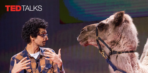 Ted Talks image. Man and camel sarcastically looking at each other on stage.